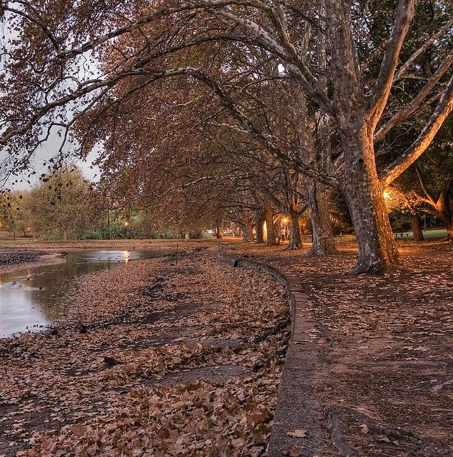 Hyde Park 3 by |neurosis|, via Flickr
