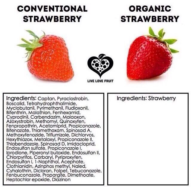 organic vs non organic It's not much different than the food you eat the difference between locally grown organic vegetables and vegetables grown hundred of miles away without organic farming is very much the same as the weed you smoke.