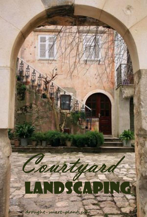 Best 20 Courtyard House Plans Ideas On Pinterest: Best 20+ Garden Oasis Ideas On Pinterest