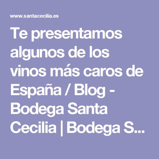 Te presentamos algunos de los vinos más caros de España / Blog - Bodega Santa Cecilia   Bodega Santa Cecilia