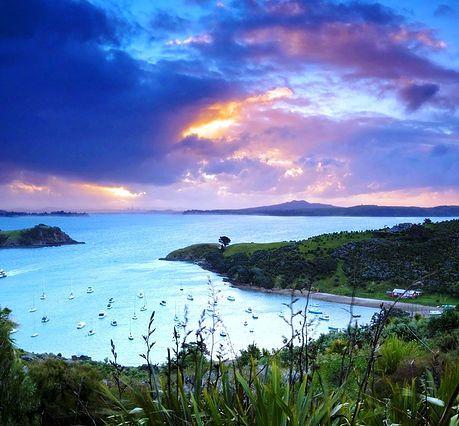 Waiheke Island - just off Auckland