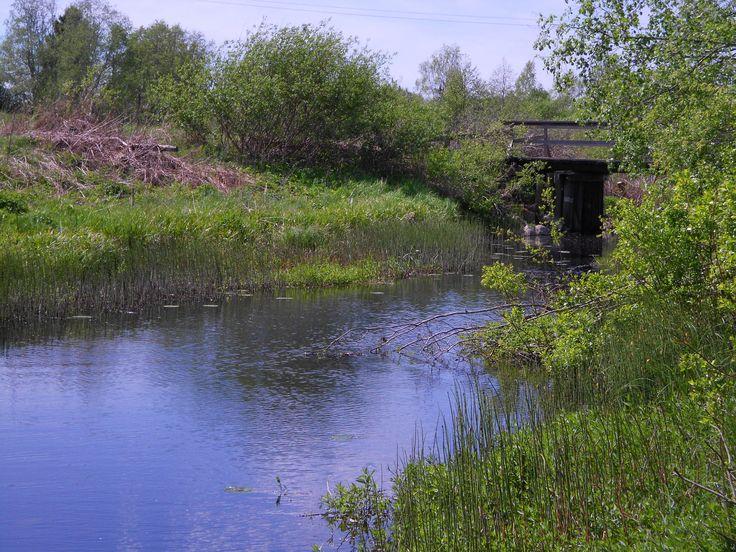Kaartjoki, Renko/Hämeenlinna