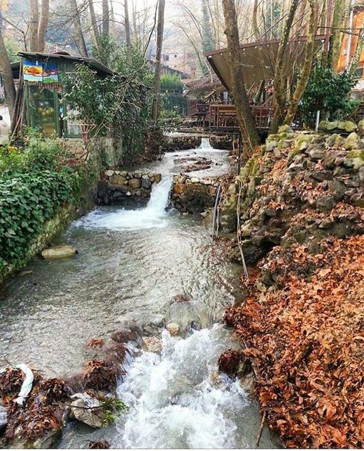 Sapanca'nın hemen yanıbaşında gezilecek yerlerden biri Maşukiye. Yürüyüş ve doğayla başbaşa olmak isteyenler için harika bir seçenek Sapanca'da günün konaklama tavsiyesi: @cayircimenevleri www.kucukoteller.com.tr/sapanca-otelleri.html @pamukturizm #sapanca #çayırçimentatilevleri #villa #villakiralama #tatilvilla #tatilvillalari ⛱ Çayır Cimen Tatil Evleri ☎️ 0264-5921414 20 Odalı 2 Kişi Ortlama Ev Fiyat: 323 TL Çocuklar için uygun Doğa ile başbaşa tatil villaları