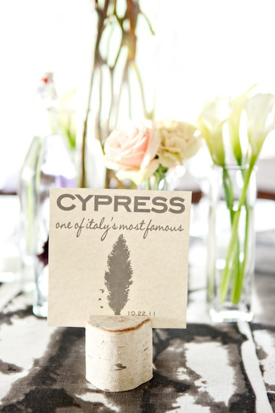 table name sign
