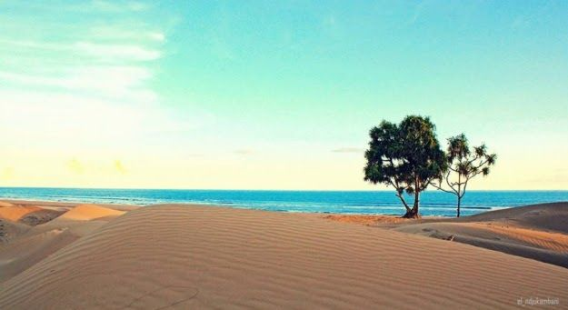 20 Pemandangan Alam Tts Keindahan Timor Tengah Selatan Ntt Indonesia Explore The Download Keunikan Wisata Alam Kabupaten Tim Di 2020 Pemandangan Pantai Alam Bebas