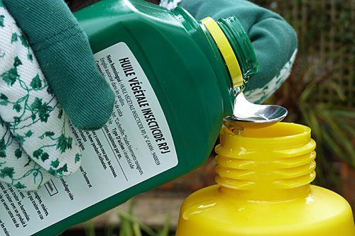 L'huile végétale insecticide favorise la répartition du traitement et son adhésion à la plante, tout en jouant un rôle similaire à celui du savon noir. ©www.map-photos.com – N. & P. Mioulane