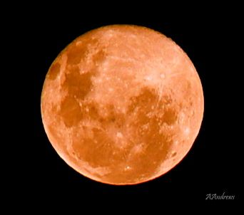 Full moon. One of my first ever (and best) moon photos. So proud.