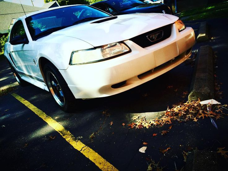 #white #whitemustangregistry #lightening #mustanglover #mustangaddict #ford #v6 #mustangporn  #stanglife #stanglovers #ponygirl #whitemustang #worldwidestangs #stanggang #mustangofinstagram #fordracing #fordofinstagram #sixxer  #mustangchick #mustangfanclub #mustanglovers #mustang_fame_page #carswithoutlimits #mustangs_with_attitude #fordmustang #exhaust @manofsteel5708 @glazzman @dyl.n_ @04mach01 @mustang.shoutout.page @that_mustang_page @jonathanalley3 @dylanvanhook42 @shawn_2001_mustang…