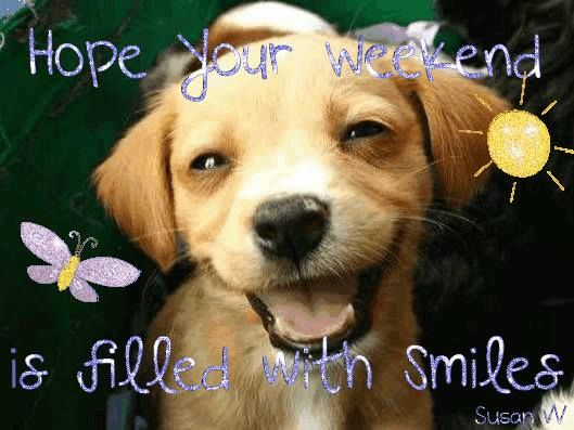 Image result for happy weekend animals