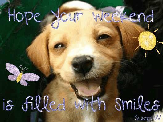 Afbeeldingsresultaat voor Happy weekend dog