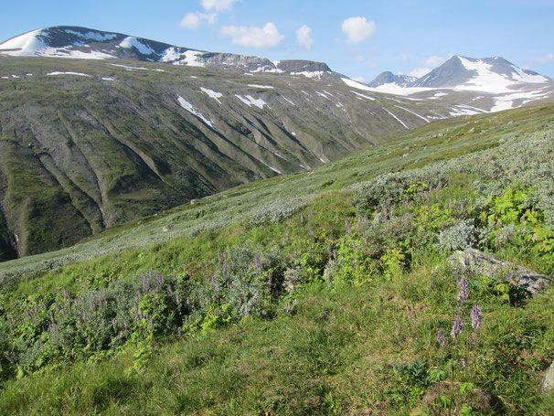 Descent from Luohttolahko plateau to Njoatsosvagge #trekking #sarek #sweden