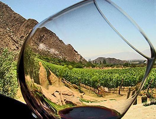 El 93% de los enoturistas afirman comprar vino de las Bodegas visitadas. - Noticias de Vinos, Cata de Vino, Degustación de vino, Vino, Denominación de Origen, Bodega, Vinoteca, Enoturismo, Sumiller, beber vino, vinos a buen precio, los mejores vinos, bodegas para visitar, vinos de españa