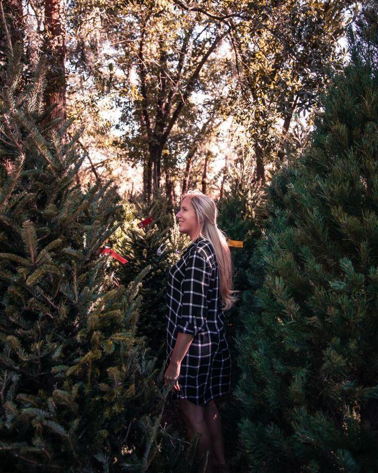 40 Things To Do In Orlando At Christmas Things To Do Orlando Winter Travel Destinations Orlando Florida Vacation