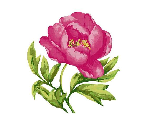 Cross stitch kit PEONY cross stitchflowerscross stitch