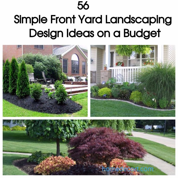 50 Best Front Yard Landscaping Ideas And Garden Designs: Best 25+ Cheap Plant Pots Ideas On Pinterest