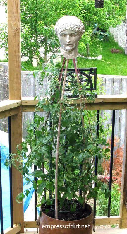 Cheap garden ideas: broken statue head trellis