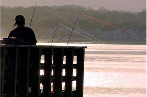 Salt Water Pier Fishing Techniques