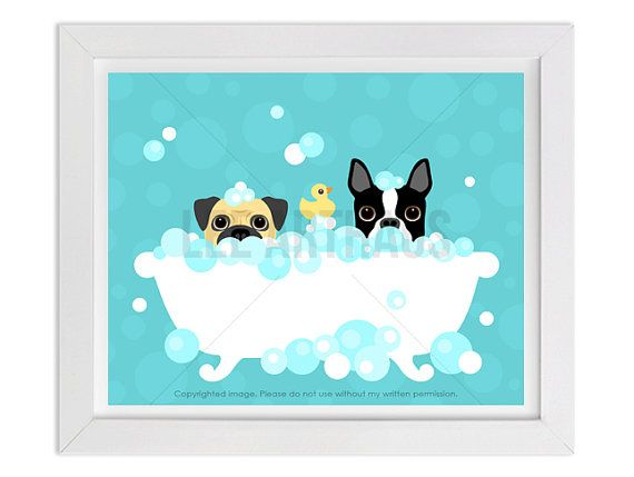 57D Bathroom Print  Pug and Boston Terrier in Bubble by leearthaus