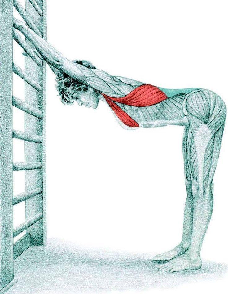 27 mejores imágenes de Fitness en Pinterest | Actividades físicas ...