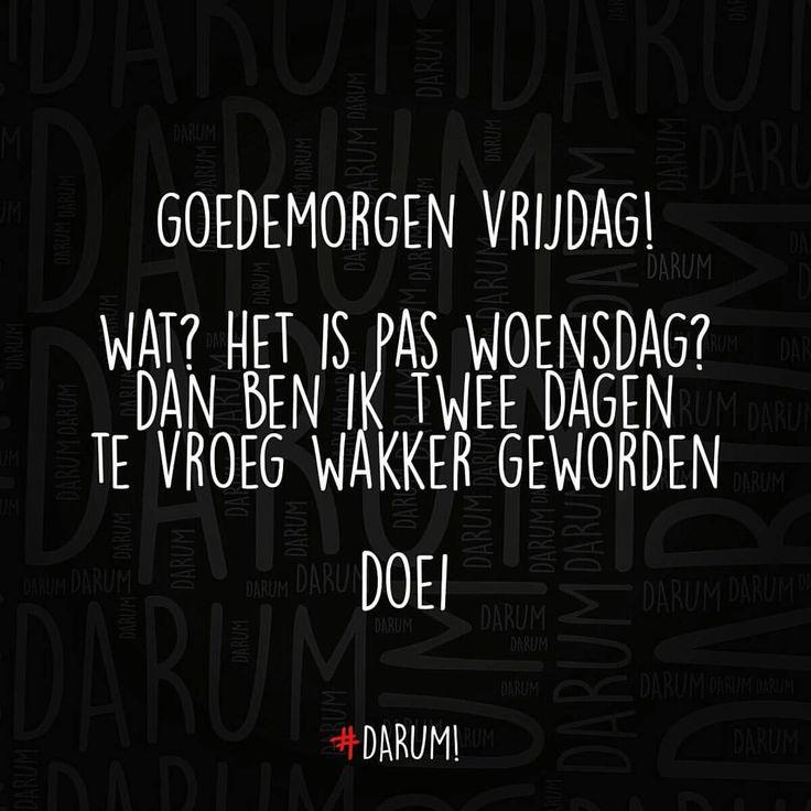 #darum #goedemorgen