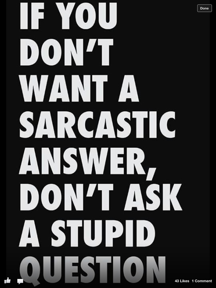 Stupid Quotes 25 Best Stupid And Ungrateful People Images On Pinterest  Funny