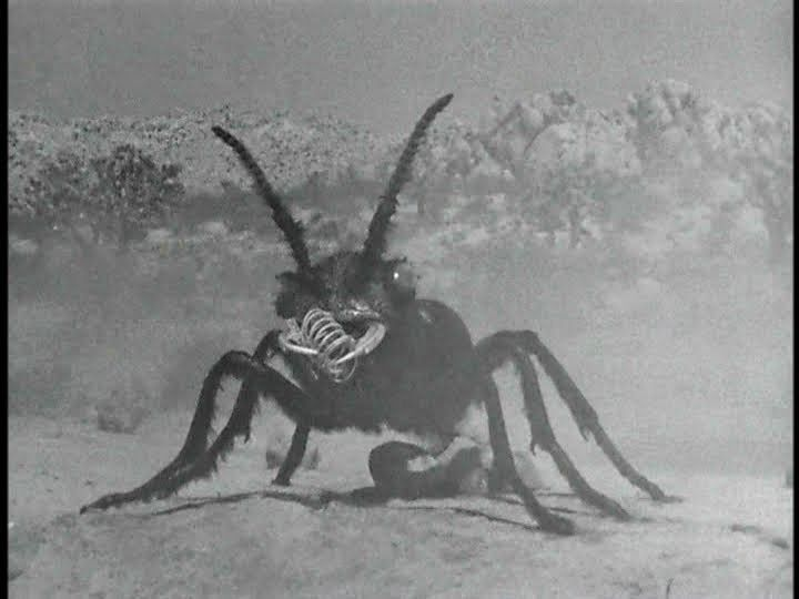 Them! (1954) Loved watching this with my dad when I was a kid