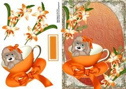 Leuke Hond met Oranje Boog in Orange theekopje