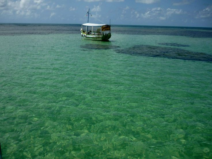 O Brasil deixa a desejar em muitas coisas, mas não dá para pensar em ficar longe de suas belas praias, que se destacam no mundo todo. Em especial, as regiões litorâneas com águas cristalinas causam um encantamento ainda maior e, por isso, lugares como o Caribe fazem tanto sucesso entre os turistas. Para a nossa …