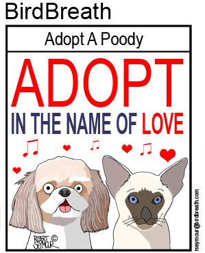 """Adopt in the name Love"""