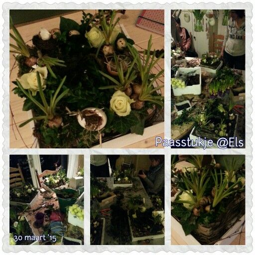 Paasstukje - Oase - Boomschors - Blauwe druifjes en roosjes - Klimop, berk, buxus,  mos