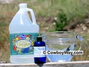 Homemade Horse Fly Spray Recipes Fly Spray Repellent Makes 1 quart  2 cups Apple Cider Vinegar 2 cups water 1 Tbsp. Lavender Oil 1 Tbsp. Eucalyptus Oil 1 Tbsp. Citronella Oil 1/2 Tbsp. Tea Tree Oil 2 drops dish liquid
