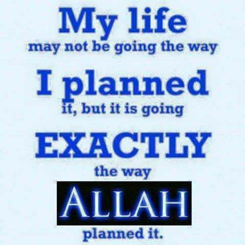 Allah is the best of planners.