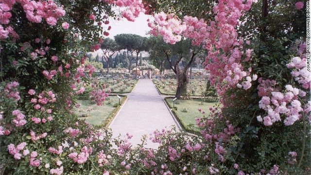 Roseto Comunale (Rome) | Rome's dreamlike Roseto Comunale (Municipal Rose Garden) in the Via di Valle Murale hosts a rose competition each May.