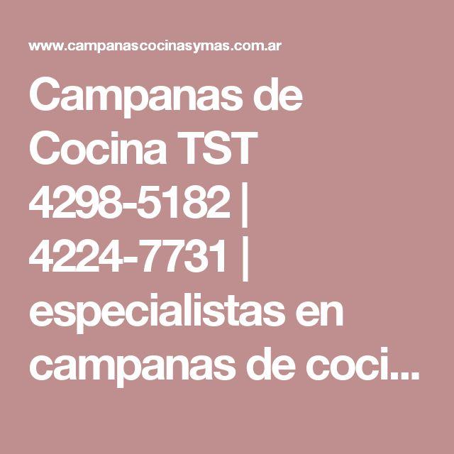 Campanas de Cocina TST 4298-5182   4224-7731   especialistas en campanas de cocina tst   Campanas para Cocinas Precios   Purificadores de Cocinas TST