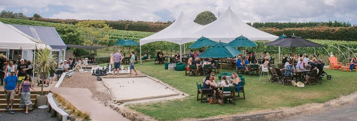 cheap and cute winery
