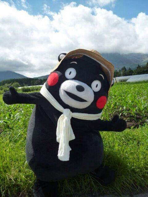 1000 Images About Kumamon On Pinterest
