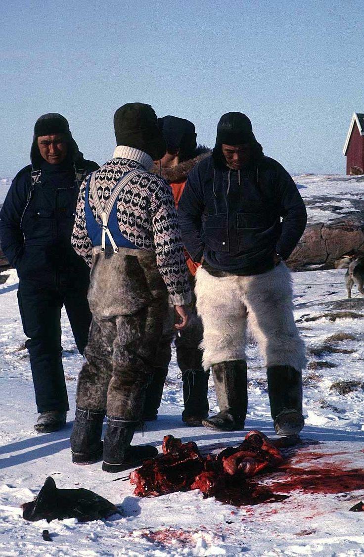 43 best eskimos images on pinterest inuit art native art and