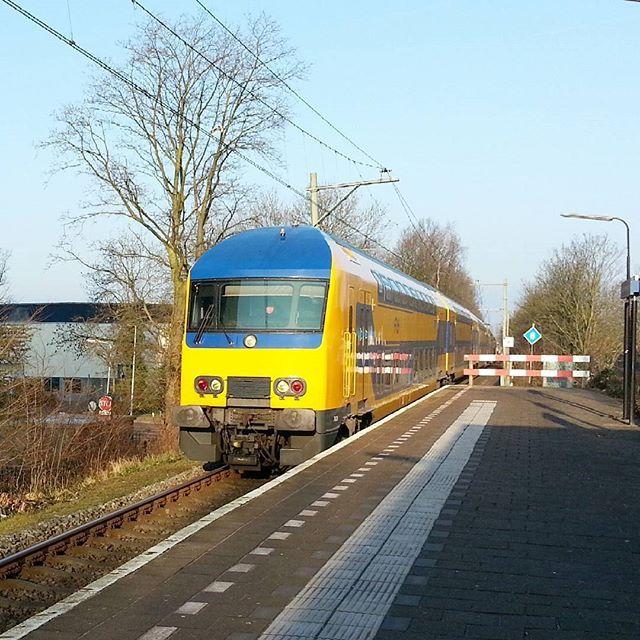 DDZ arriving at Leiden Lammenschans and is on its way to Utrecht March 2016 #ddz #ns #nederlandsespoorwegen #dutchrailways #leiden #lammenschans #utrecht #l4l #trainspotting #trainphotography #trainphotographics #trains #eisenbahnbilder #eisenbahnfotografie #eisenbahnherz #ic #early #holland #thenetherlands #nederland #zuidholland #photography #shot