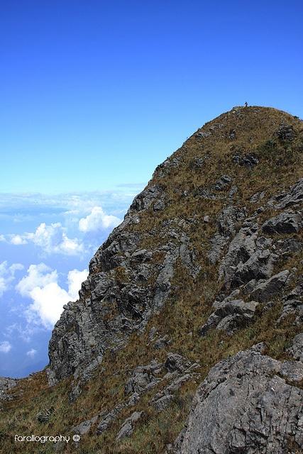 """Pico Pance"". PNN Los Farallones de Cali."