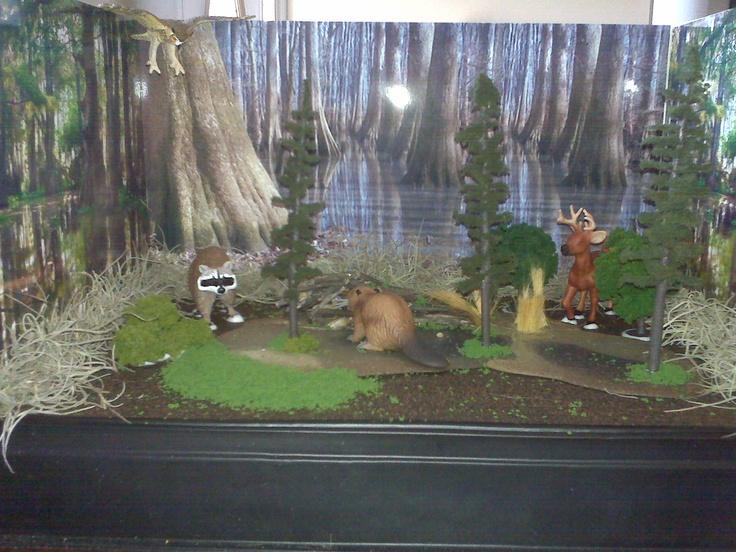how to make a wetland diorama