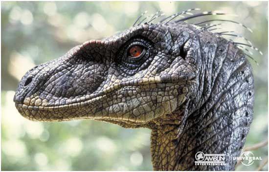 velociraptor   velociraptor de jurassic park operaci n genesis
