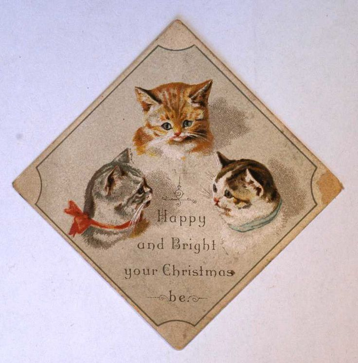 27 best christmas cards images on pinterest christmas cards cat christmas card c1880 1889 leeds museums and galleries collection m4hsunfo