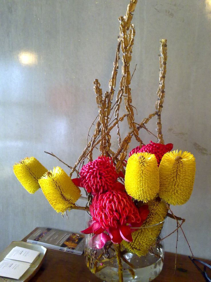Corporate arrangement of waratah's (a favourite!), corked elm and yellow bottle brush.