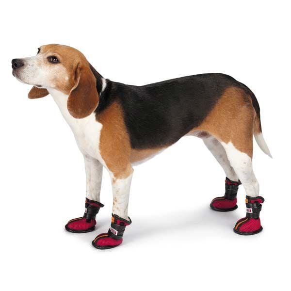 kong-high-top-sport-dog-boots-red-1