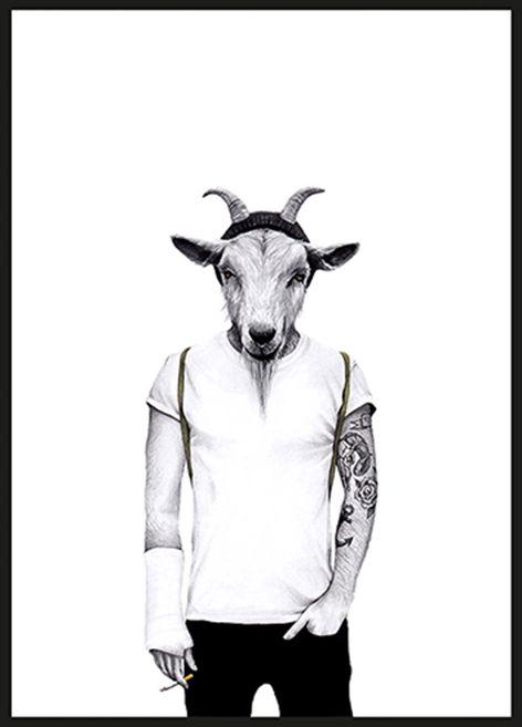 Hipster-goat-ram
