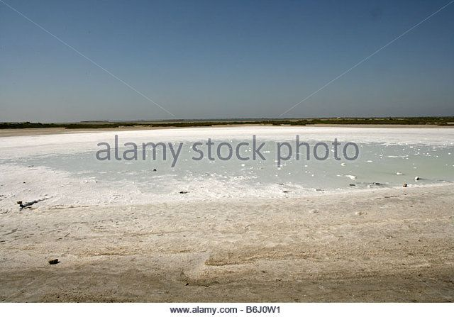 Image result for shallow dry mud flat