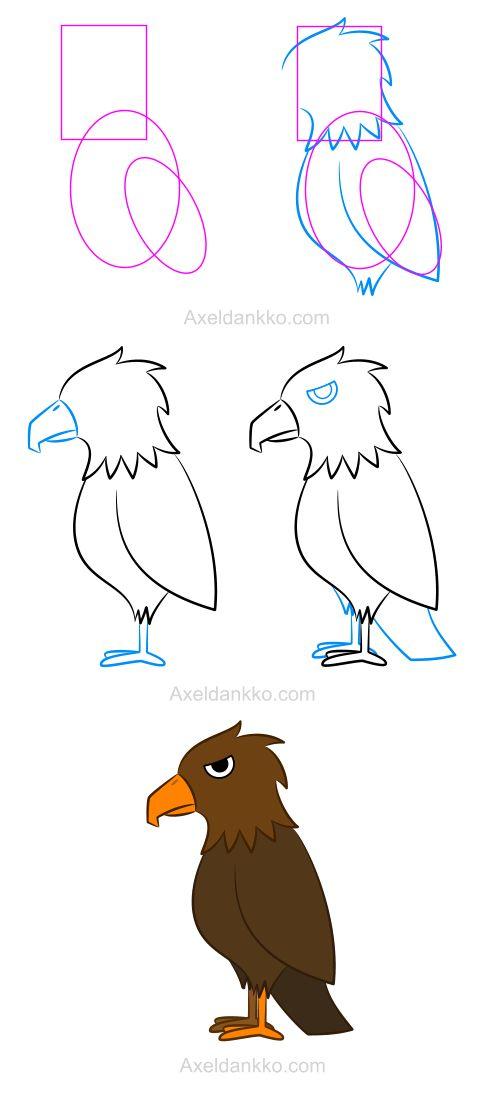 How to draw a falcon - Comment dessiner un faucon