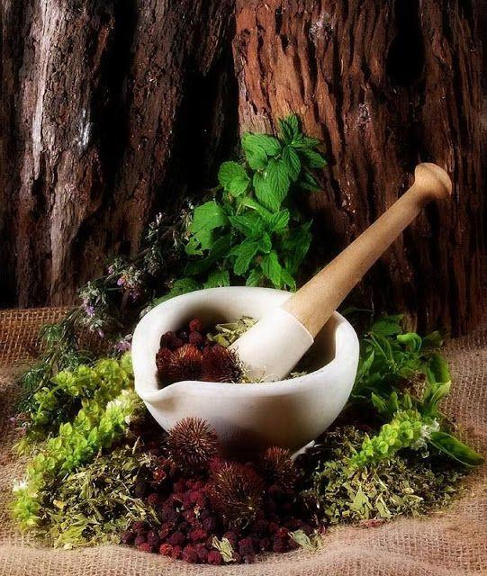 De las virtudes medicinales de los perfumes naturales