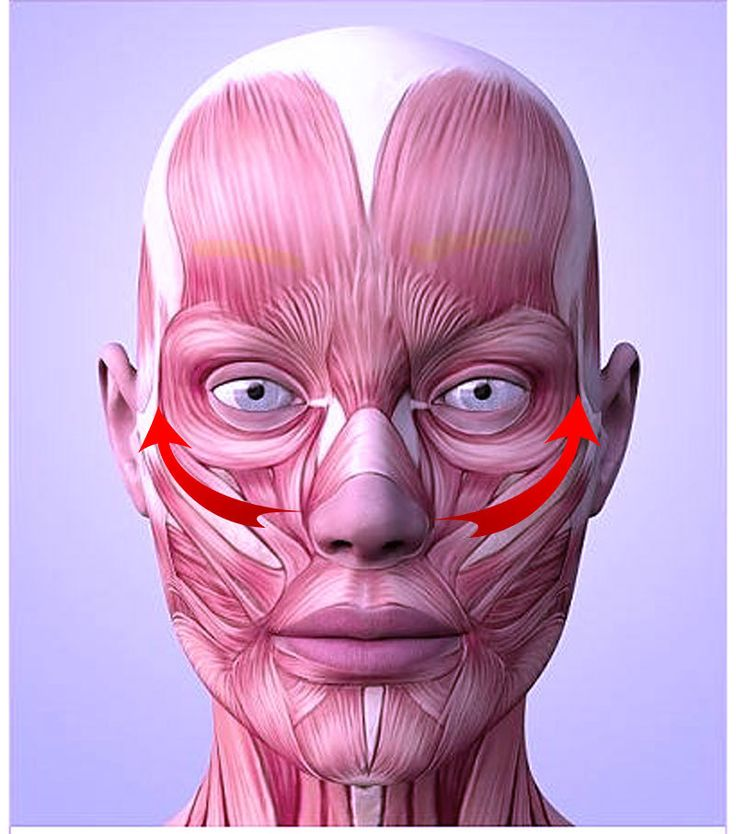 picture-of-facial-muscles-tightest-pink-pussy-in-da-world