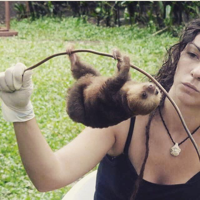 HOW CUTE IS THIS LITTLE SLOTHY!!! Credit to @ellie_stonee for this pic
